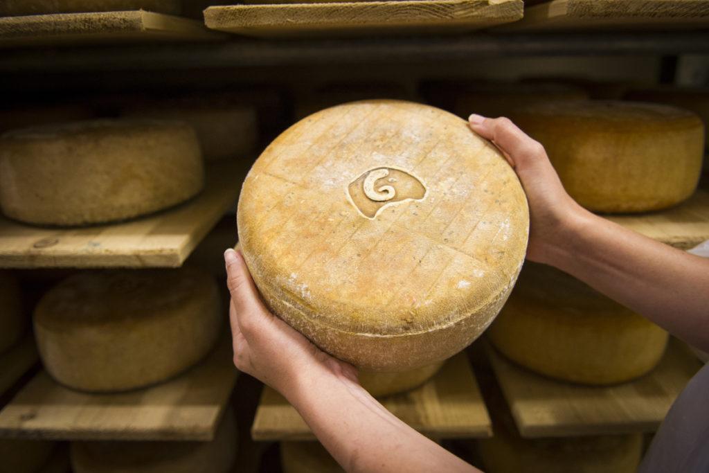 fromage_ossau_iraty